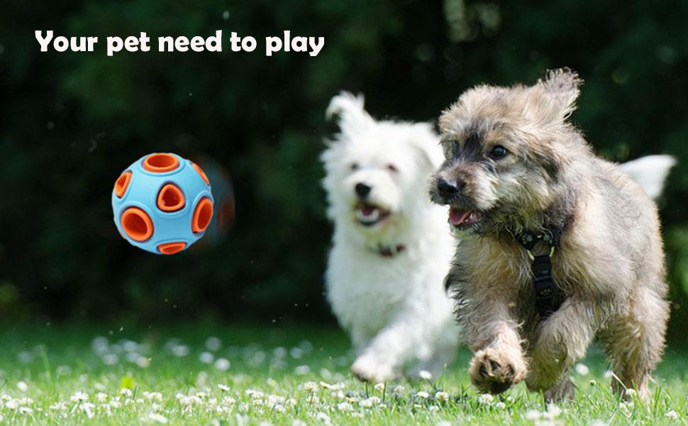 dog toys ball
