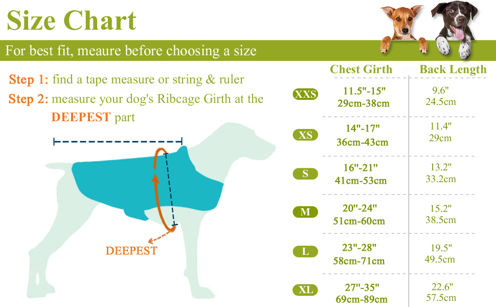 size chart of dog coat