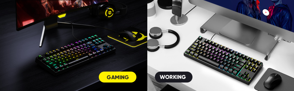 Designed for both Gaming and Working Content