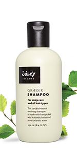 Graedir Shampoo