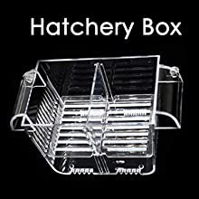 aquarium hatchery box