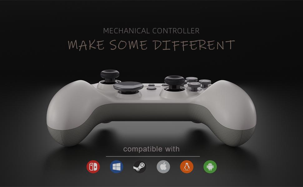 Sunwaytek Switch Pro Controller