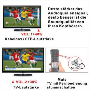 Lautstärkeeinstellungen von TVsbzw. mit TV verbundenen AV-Geräten