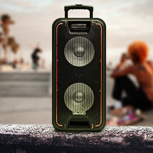 speaker with trolley