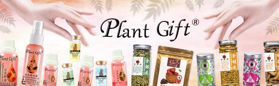 plant gfit