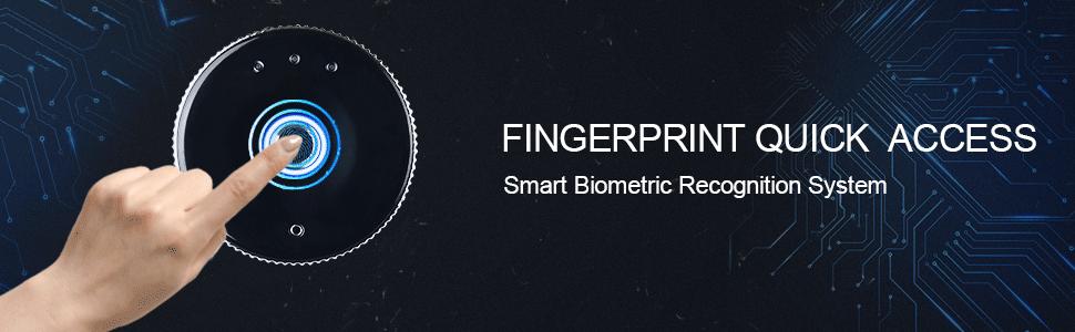 fingerprint safe