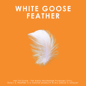 feather duvet