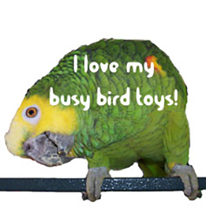 bird toys for parrots