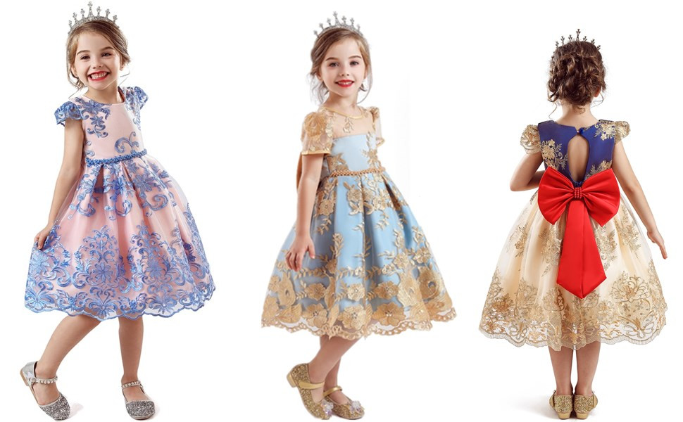648 Light Pink 6-12 Months TTYAOVO Baby Girls Embroidered Tulle Flower Princess Wedding Birthday Party Dress Size 80