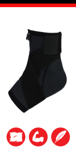 anklecomp