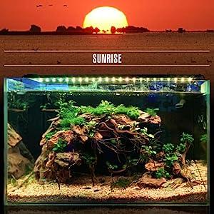 Sunrise-Daylight-Moonlight DEFAULT MODE (24/7 Natural Mode)1
