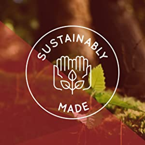 Sustainably Made Healthy Mushroom Extracts Clean Real Food Nutrition All Natural Wild Foods Balance