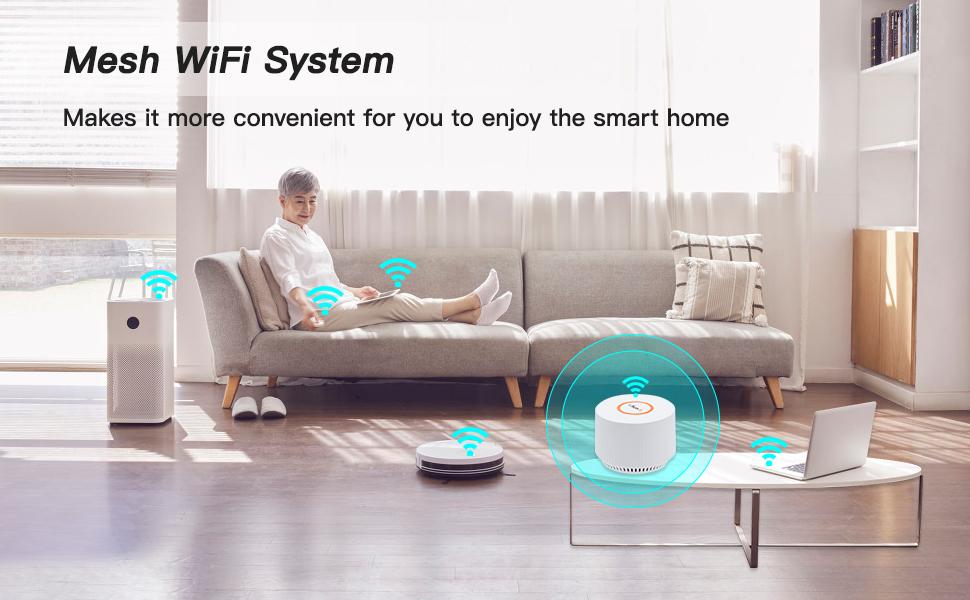 Mesh WiFi System