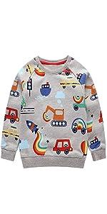 Little Boys Cotton Sweatshirts