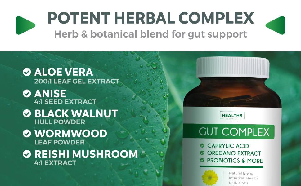 Aloe vera, anise extract, black walnut hull powder, wormwood, reishi mushroom extract - supplement