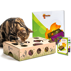 Cat gift cat toy present for cats and cat owners holiday or party fun interactive game for cats