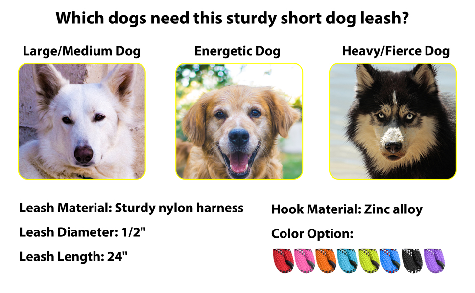 Which dogs need this sturdy short dog leash?