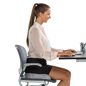 Office Chair Cushion