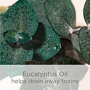 egyptian chamomile oil eucalyptus clove soften soothe remove toxin clear skin botanical natural