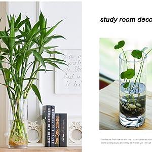 study room decorating