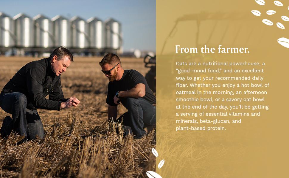 farmer, field, technology, wheat