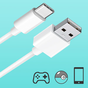 switch charger usb