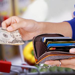 FurArt Credit Card Wallet