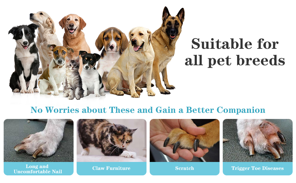 Suitable for all pet breeds