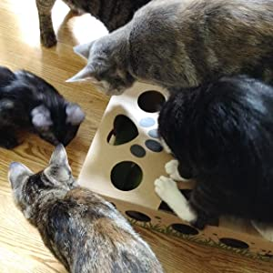 Multi-cat many cats puzzle toy treat puzzle feeder activity toy for solo cat play by themselves