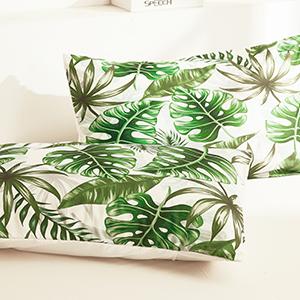 plant bedding