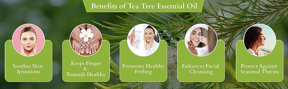 rey naturals tea tree essential oil pure natural clean healthy skin hair glowing skin