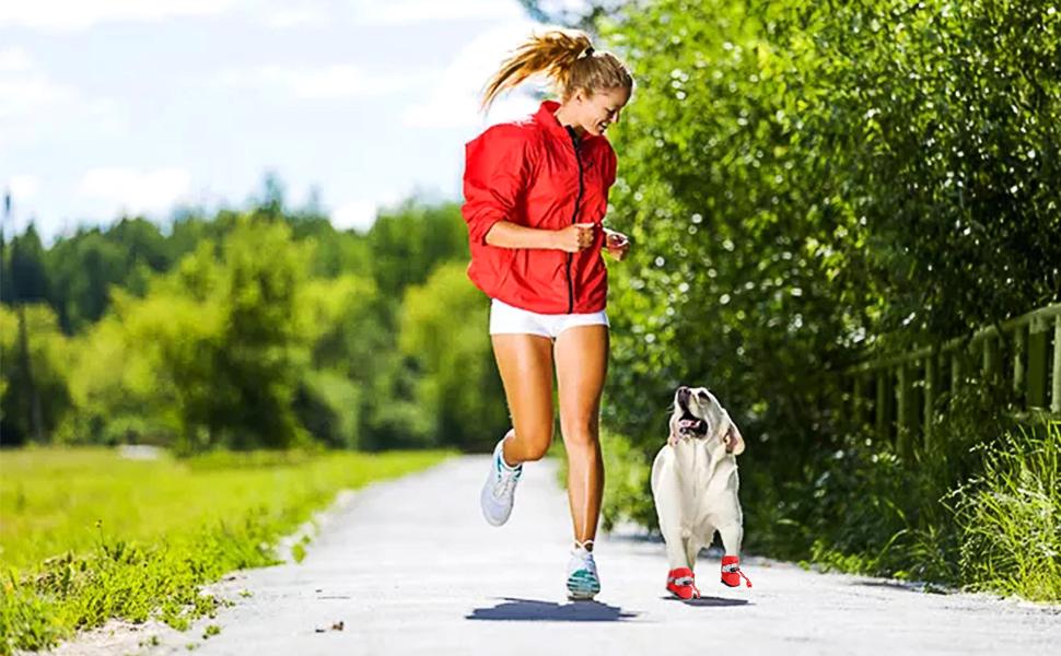 Aller courir avec un chien