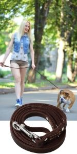 dog leashes for medium dogs