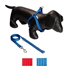 UPDOG Protector de Coche para Perros Doble Apertura para 2 ...