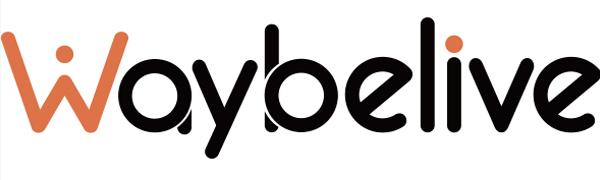 Waybelive logo