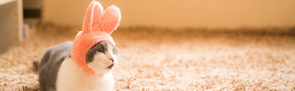 Cat Cap Rabbit cute cat hap hat for pet bunny cap for cat