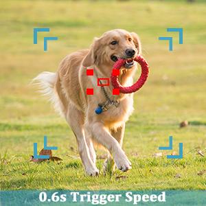 0.6S trigger speed