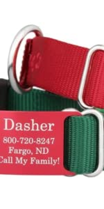 dogIDS Holiday Nylon Collar with Personalized ScruffTag Nameplate - Custom Gift Present