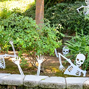 skeleton Halloween Display Set