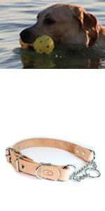 sleepy pup adjustable full grain leather martingale dog collar