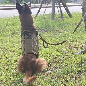 tactical dog vest molle