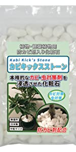 カビキックスストーン,カビ,観葉植物,白カビ,キープストーン