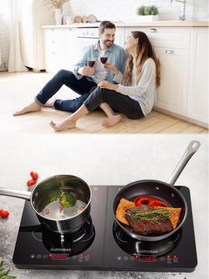 2 plaques de cuisson à induction