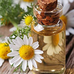 Chamomile is extracted from the flowers to promote restful sleep and relaxation.