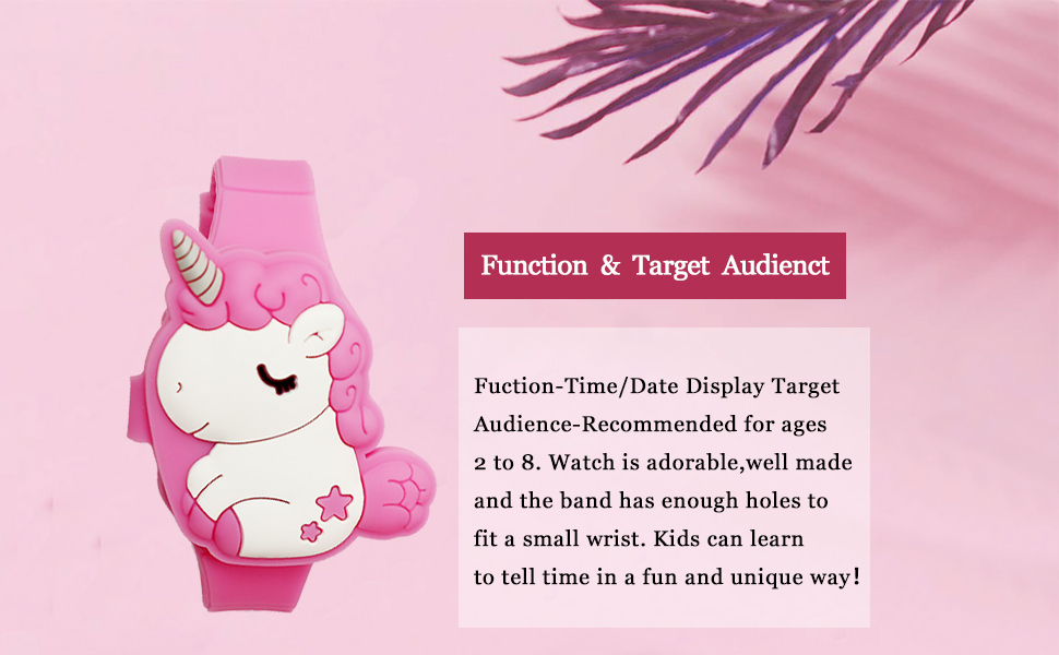 function and target audient