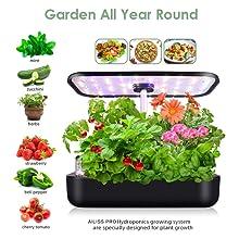 All-in-one indoor garden starter set