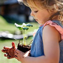 Nachhaltig zero waste umweltbewusst umweltfreundliche box Lunchbox sustainable ökofreundlich ökologisch