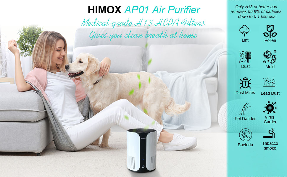 h13 grade air purifier