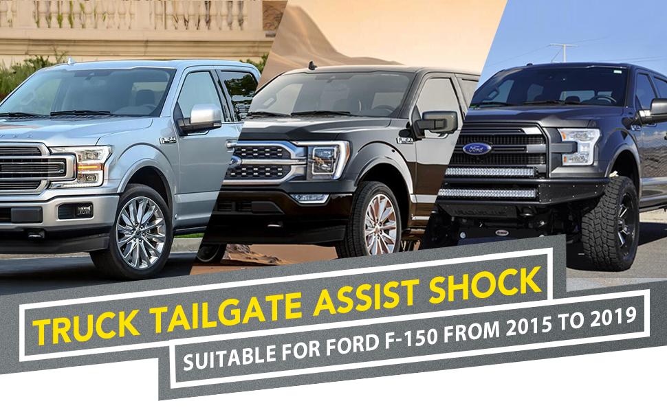Truck Tailgate Assist Shock
