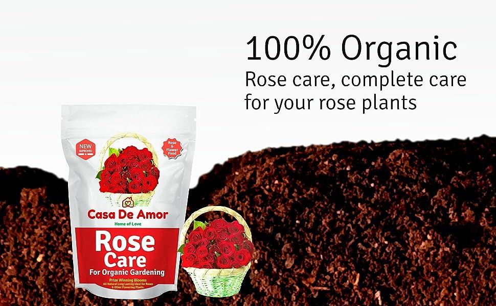 Casa De Amor Rose Care